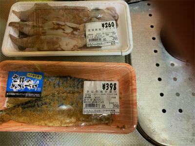 201105買って来た魚(岩美)1