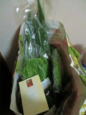 201117出荷野菜