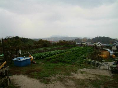201203安菜蔵2