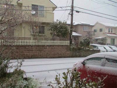 201230雪の朝