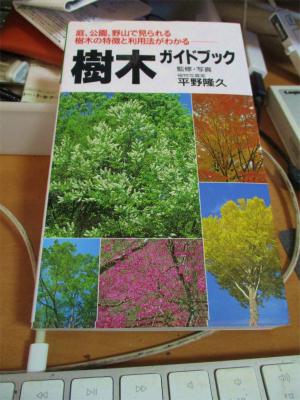 210124樹木の図鑑
