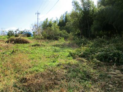 210131タケノコ狩り予定の耕作放棄地