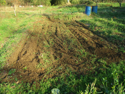 210131埋めた池の後も含めて軽く耕運