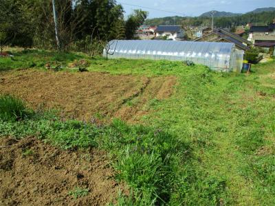210324草刈り開始3