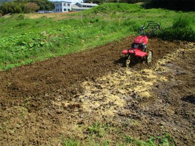210409里芋の土作り