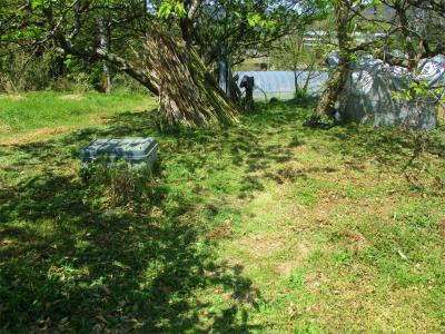 210412畑中央部の草刈り2