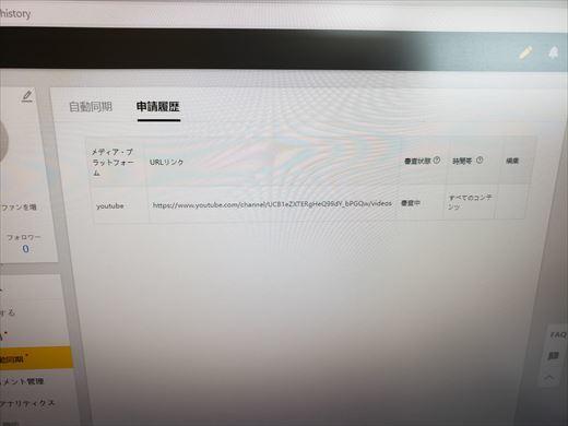 バズビデオ (2)