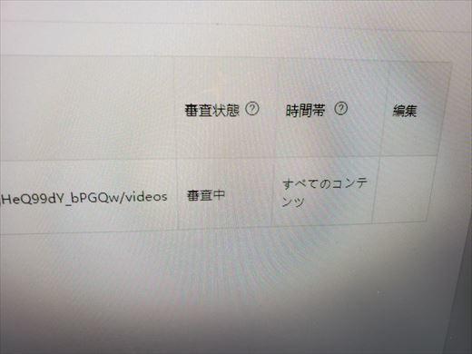 バズビデオ (6)