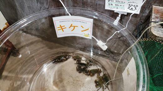 ざうお所沢 (11)
