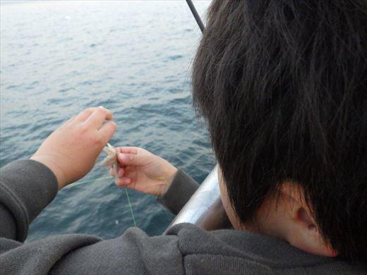 うみかぜ公園で五目釣り (12)