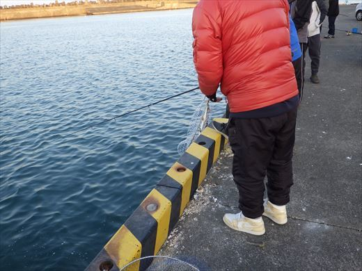 銚子漁港 (18)