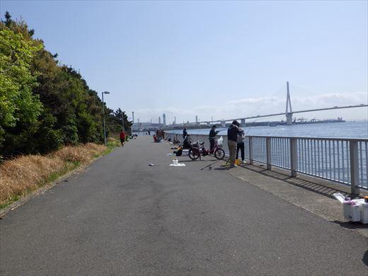 横浜で釣り (6)