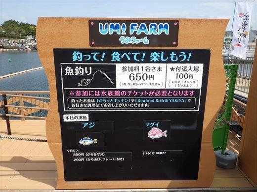 八景島シーパラダイス (3)