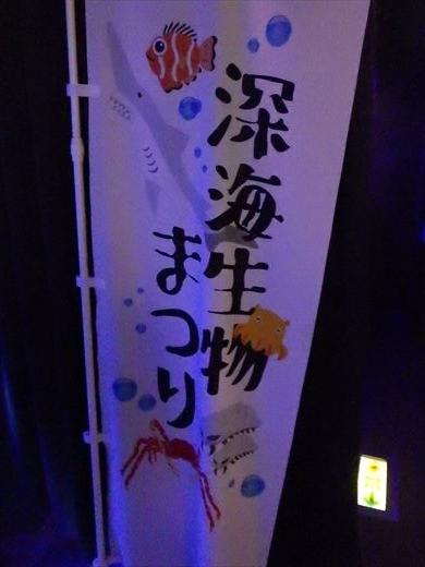 八景島シーパラダイス (11)