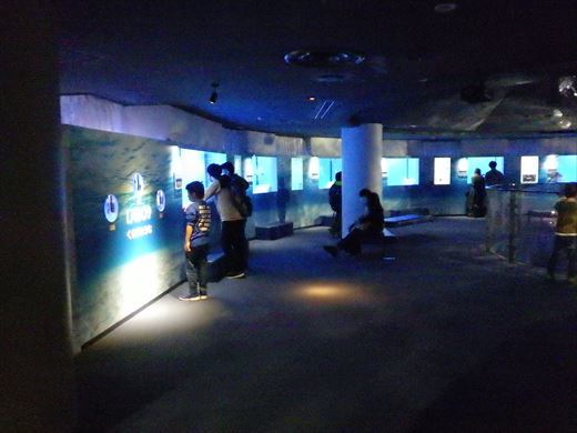 八景島シーパラダイス (15)