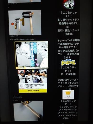 ブログ広告 (2)