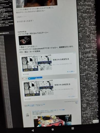 ブログ広告 (7)
