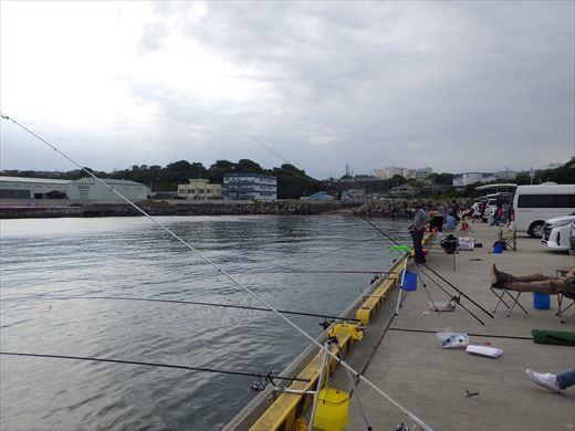 久慈漁港で釣り (6)