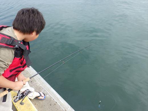久慈漁港で釣り (3)