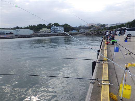 久慈漁港で釣り (9)