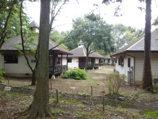 キャンプ (13)