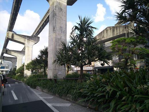 2021沖縄1日目 (23)