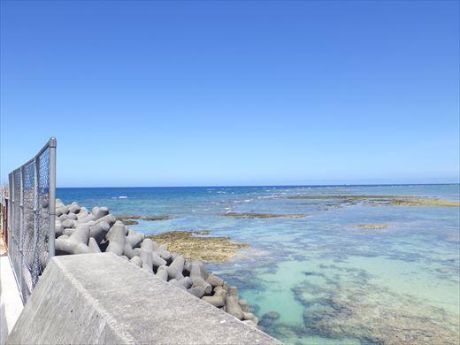 今日も泳ぐ【沖縄】 (6)
