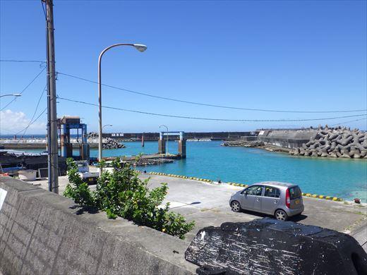 今日も泳ぐ【沖縄】 (7)