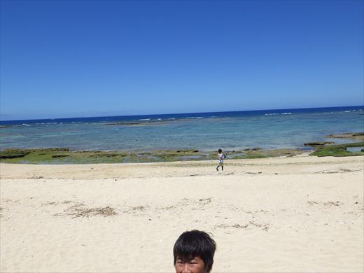 今日も泳ぐ【沖縄】 (10)