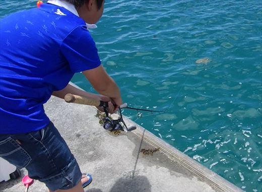 ウミガメ釣ってしまった_R