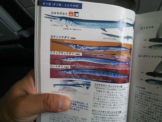 沖縄最終日は帰るだけ (14)