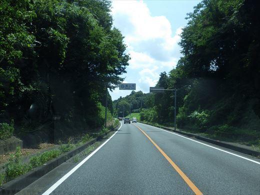 嵐山 (6)