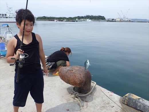 館山港で釣り (5)
