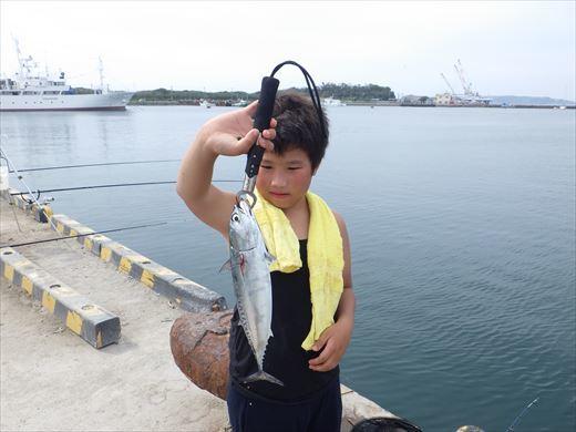 館山港で釣り (16)