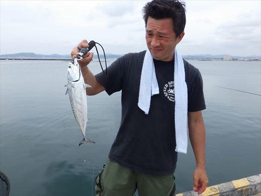 館山港で釣り (14)