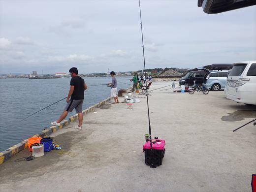 館山港で釣り (17)