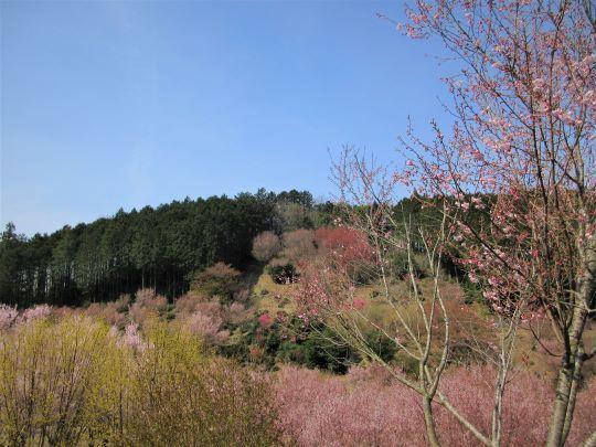 21_03_27-07tougenkyou.jpg