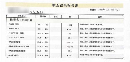blog_000002056.jpg