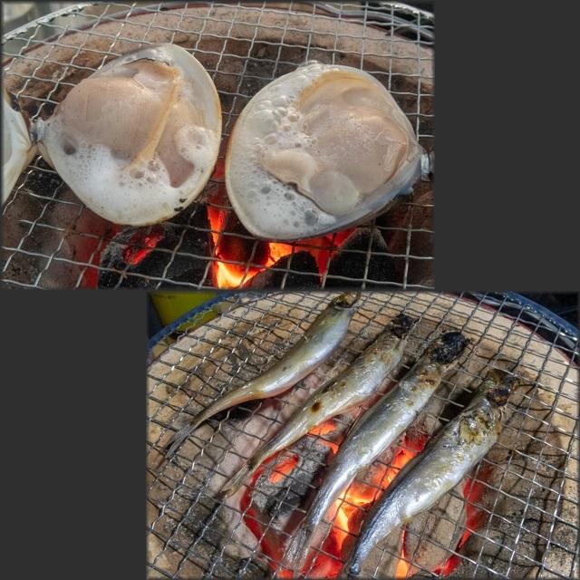 人魚(18)