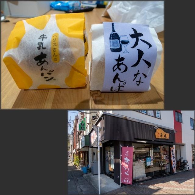 伊豆ドラ(29)