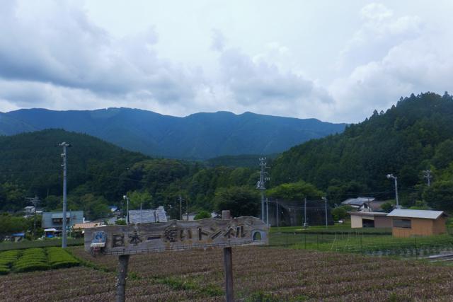 静岡(9)