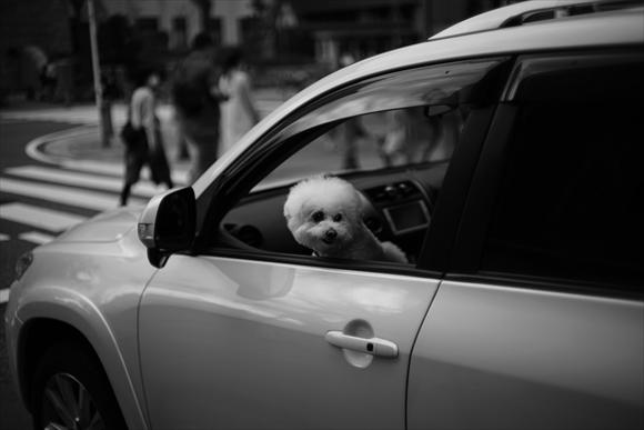 車窓-1_R