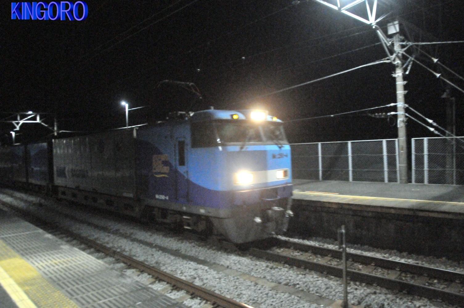 DSC_8556_20210911_001654.jpg
