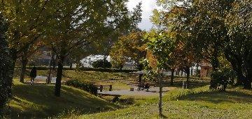 公園IMG_20201028_131502