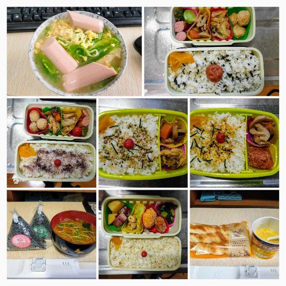 IMG20201112121713-COLLAGE.jpg