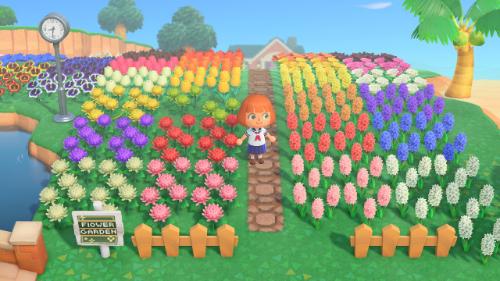 あつ森、花畑