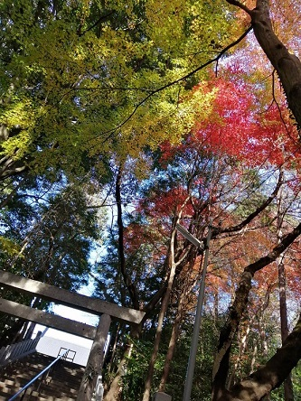 kaidan20201212.jpg